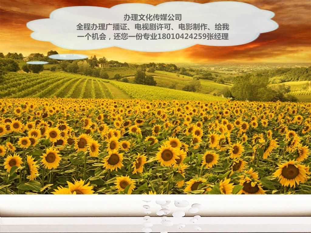 壁纸 成片种植 风景 花 植物 种植基地 桌面 1024_768